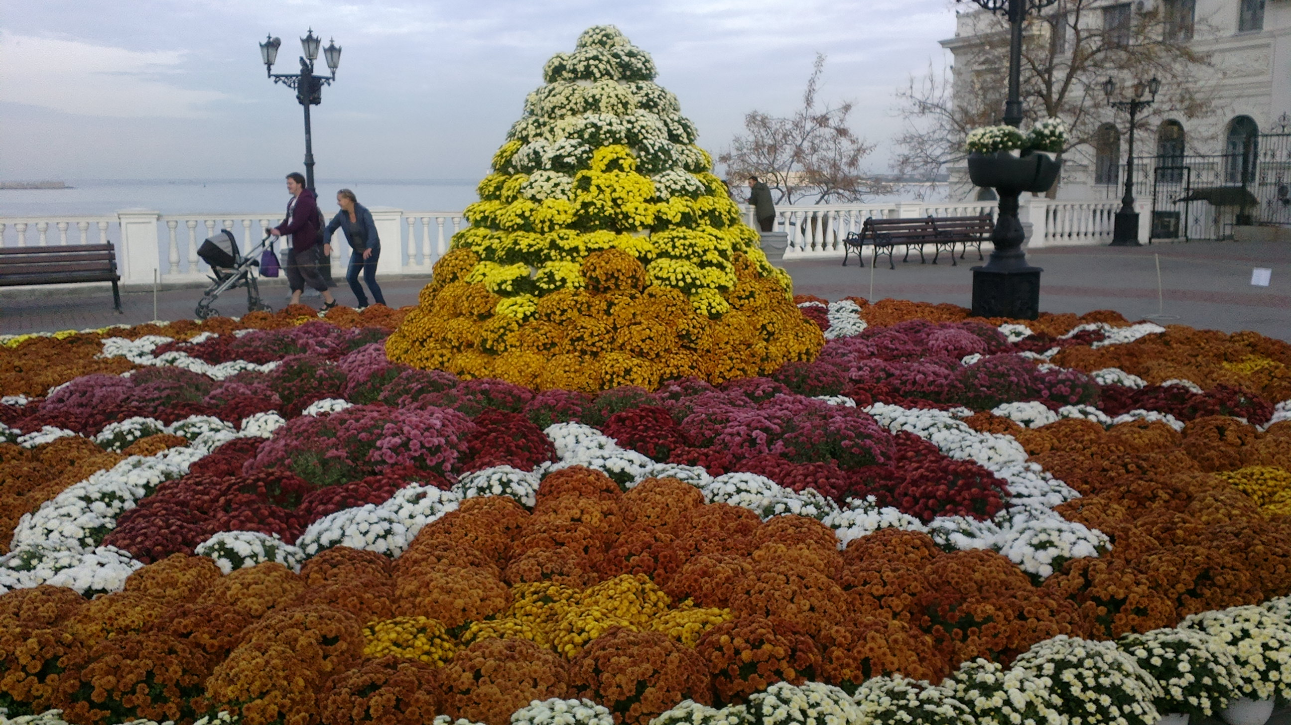 Где купить цветы в севастополе, день валентина